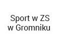 Sport wZS wGromniku